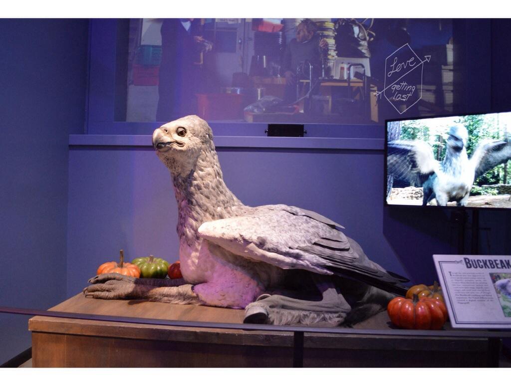 Animitronic Buckbeak Harry Potter studio tours Watford England