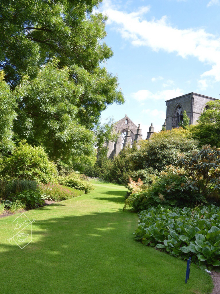 Holyrook Abbey view through the gardens , Holyrook palace, edinburg, scotland, united kingdom